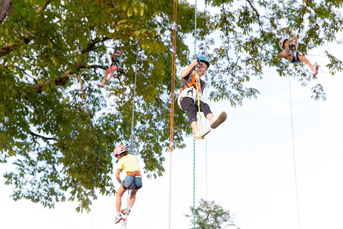 Tree Climbing Exhibition and Residency Kanna Fall Art Festival Onishi Japan