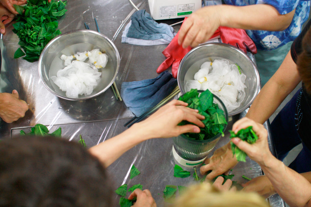 Green leaf Indigo Dyeing workshop in Takasaki Japan